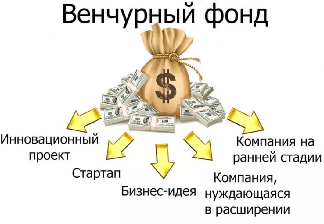 как работает венчурный фонд