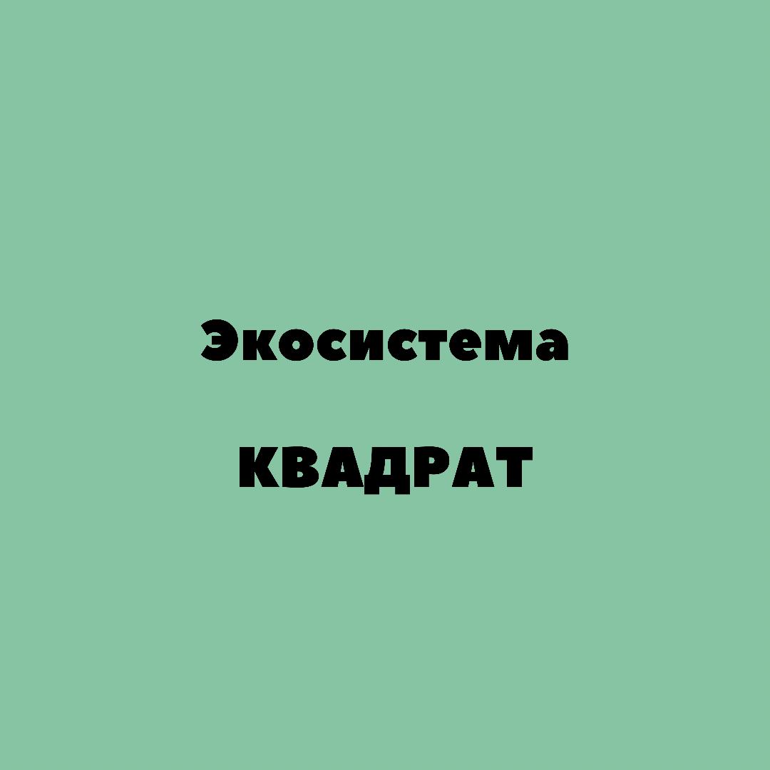 Инструкция по успешному использованию Экосистемы КВАДРАТ